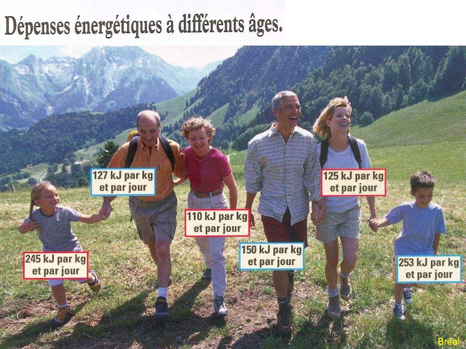 Dépense énergétique en kJ/h Le deuxième document montre la dépense énergétique horaire pour différentes activités