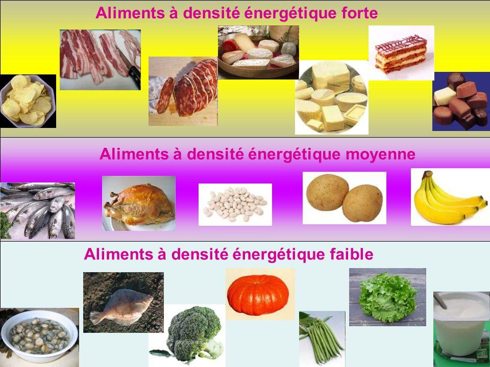 4.1 Proposition de repas équilibré quand on a une grande dépense énergétique 4.2 Proposition de repas équilibré quand on a une faible dépense énergétique