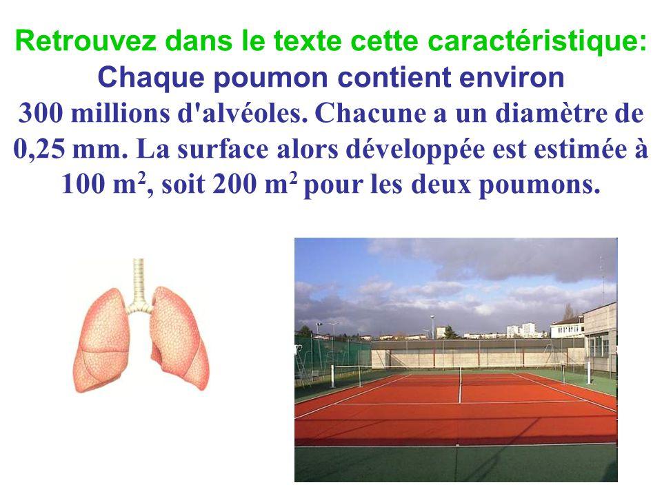 Retrouvez dans le texte cette caractéristique: Chaque poumon contient environ 300 millions d alvéoles.