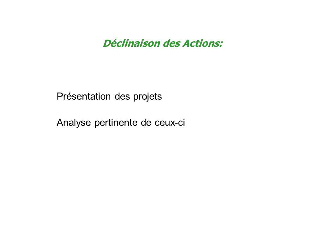 Déclinaison des Actions: Présentation des projets Analyse pertinente de ceux-ci