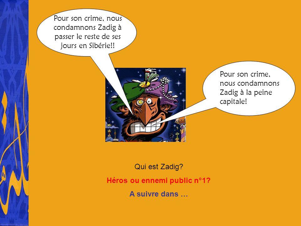 Qui est Zadig? Héros ou ennemi public n°1? A suivre dans … Pour son crime, nous condamnons Zadig à la peine capitale! Pour son crime, nous condamnons