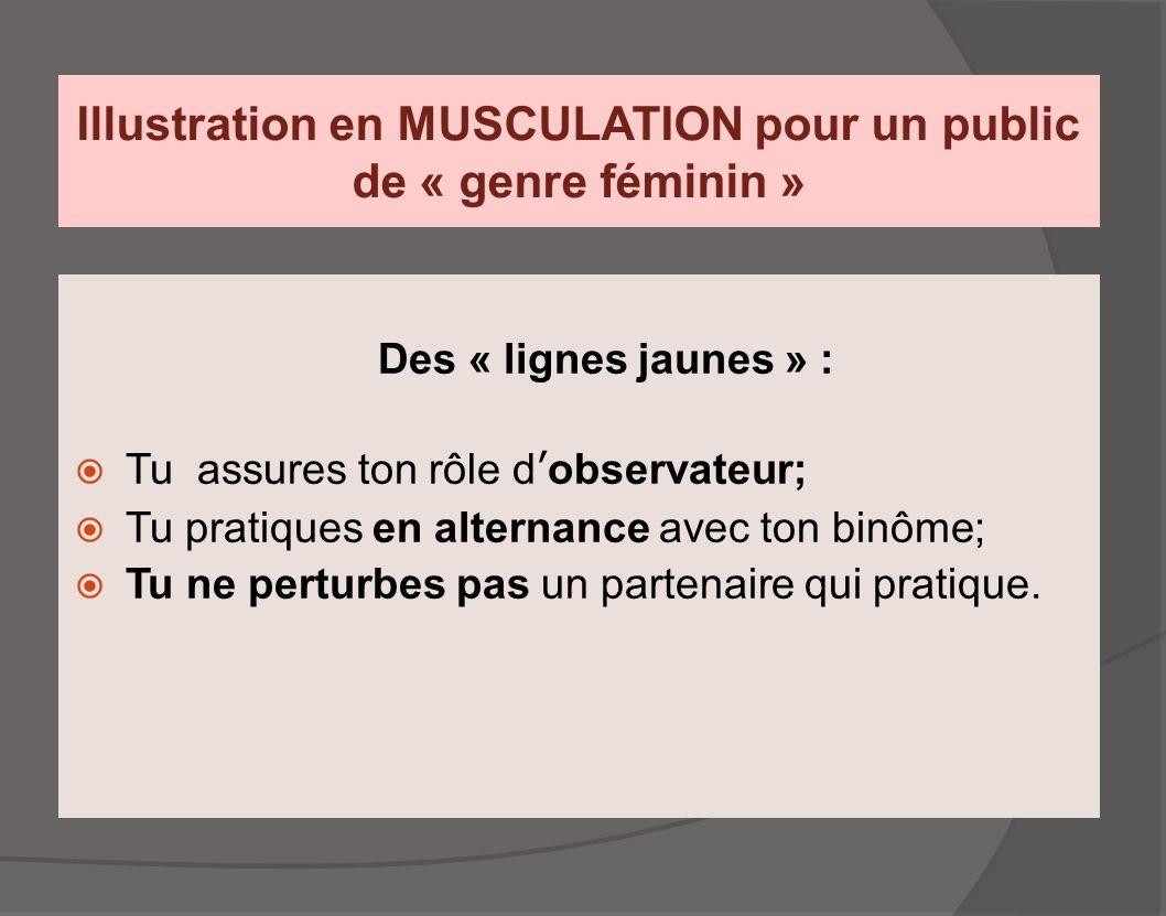 Illustration en MUSCULATION pour un public de « genre féminin » Des « lignes jaunes » :  Tu assures ton rôle d'observateur;  Tu pratiques en alterna