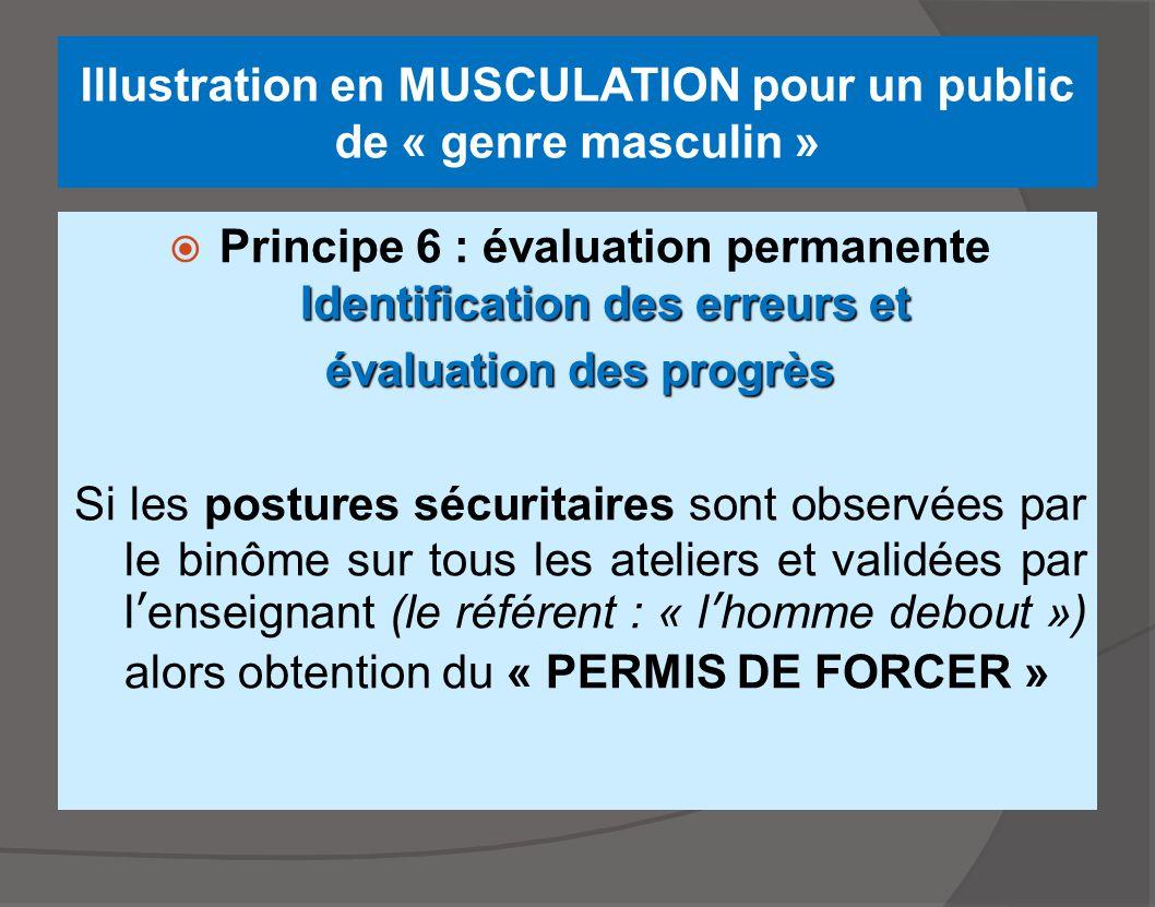 Illustration en MUSCULATION pour un public de « genre masculin » Identification des erreurs et  Principe 6 : évaluation permanente Identification des