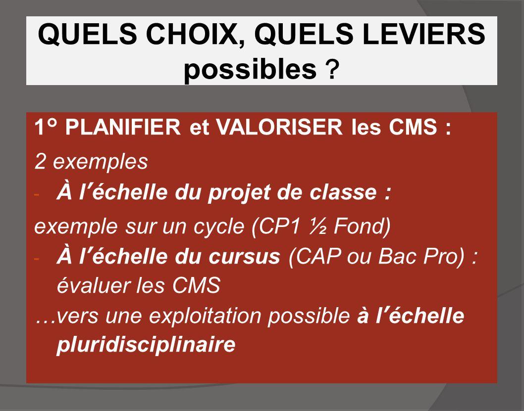 QUELS CHOIX, QUELS LEVIERS possibles ? 1° PLANIFIER et VALORISER les CMS : 2 exemples - À l'échelle du projet de classe : exemple sur un cycle (CP1 ½