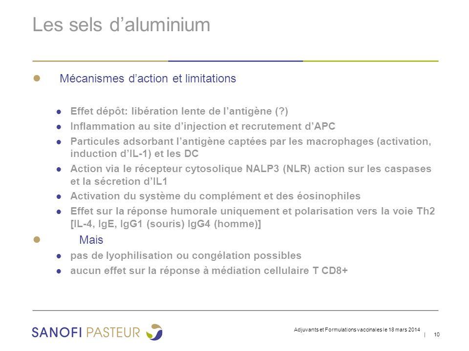 | 10 Les sels d'aluminium ● Mécanismes d'action et limitations ● Effet dépôt: libération lente de l'antigène (?) ● Inflammation au site d'injection et recrutement d'APC ● Particules adsorbant l'antigène captées par les macrophages (activation, induction d'IL-1) et les DC ● Action via le récepteur cytosolique NALP3 (NLR) action sur les caspases et la sécretion d'IL1 ● Activation du système du complément et des éosinophiles ● Effet sur la réponse humorale uniquement et polarisation vers la voie Th2 [IL-4, IgE, IgG1 (souris) IgG4 (homme)] ● Mais ● pas de lyophilisation ou congélation possibles ● aucun effet sur la réponse à médiation cellulaire T CD8+ Adjuvants et Formulations vaccinales le 18 mars 2014