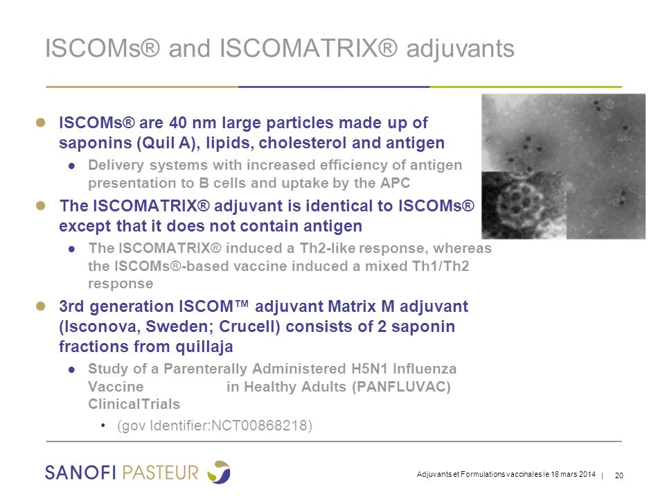 | 20 ISCOMs® and ISCOMATRIX® adjuvants ● ISCOMs® are 40 nm large particles made up of saponins (Quil A), lipids, cholesterol and antigen ● Delivery sy