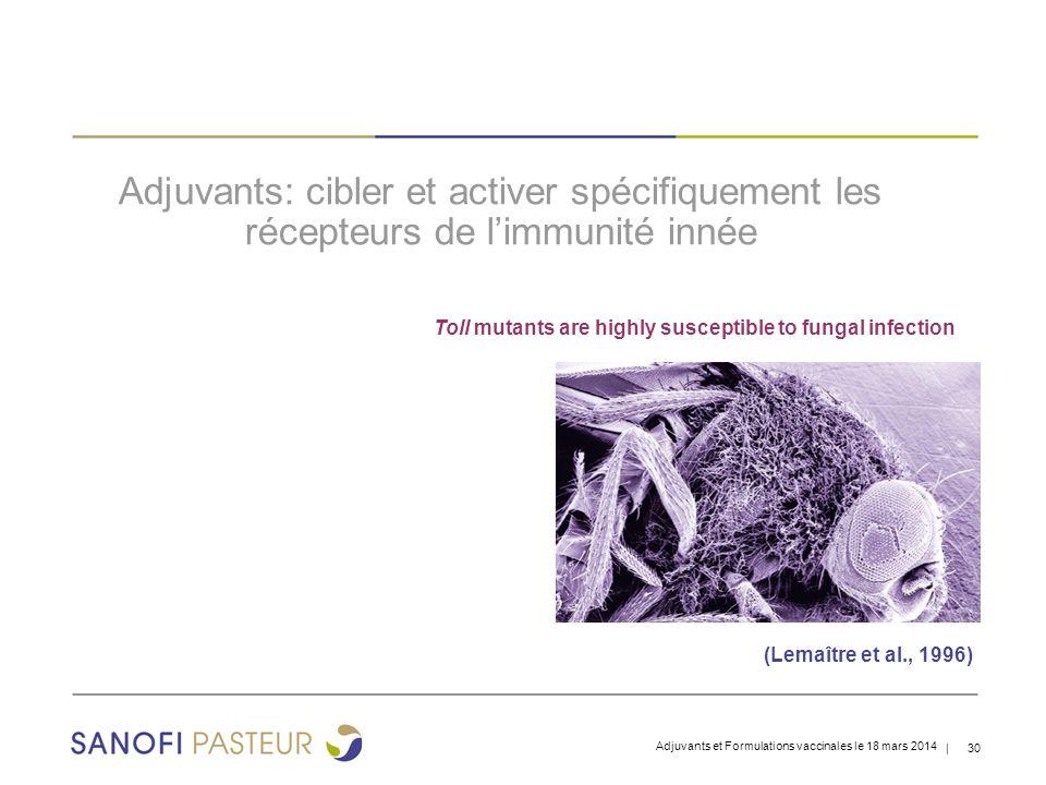 | 30 Adjuvants: cibler et activer spécifiquement les récepteurs de l'immunité innée Adjuvants et Formulations vaccinales le 18 mars 2014 Toll mutants are highly susceptible to fungal infection (Lemaître et al., 1996)