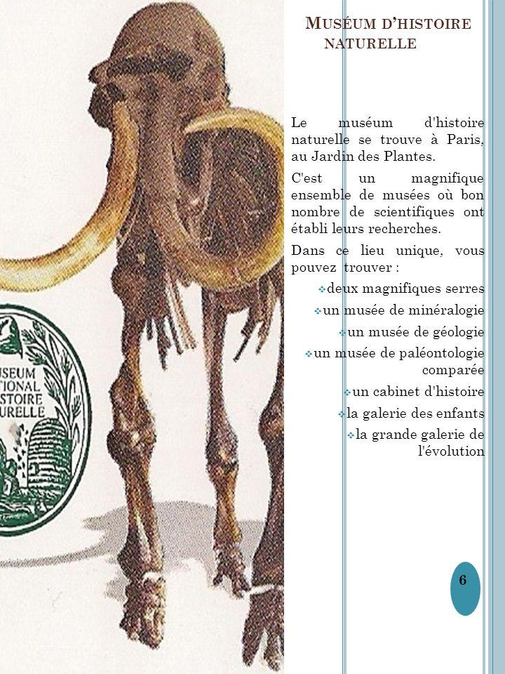 L M USÉUM D ' HISTOIRE NATURELLE Le muséum d'histoire naturelle se trouve à Paris, au Jardin des Plantes. C'est un magnifique ensemble de musées où bo