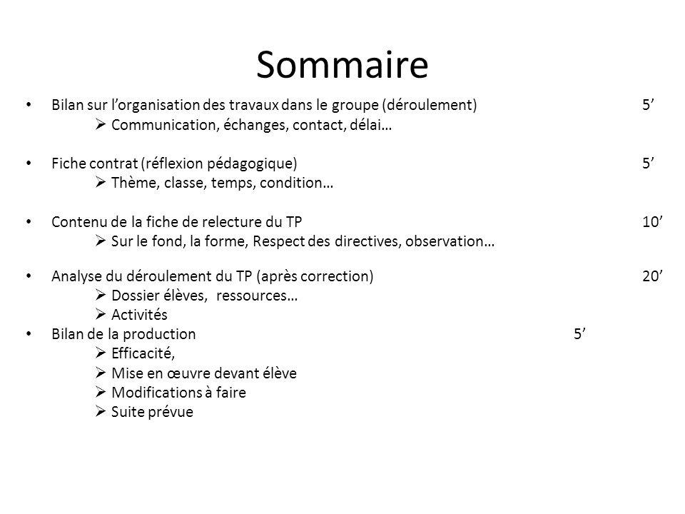 Sommaire Bilan sur l'organisation des travaux dans le groupe (déroulement)5'  Communication, échanges, contact, délai… Fiche contrat (réflexion pédag