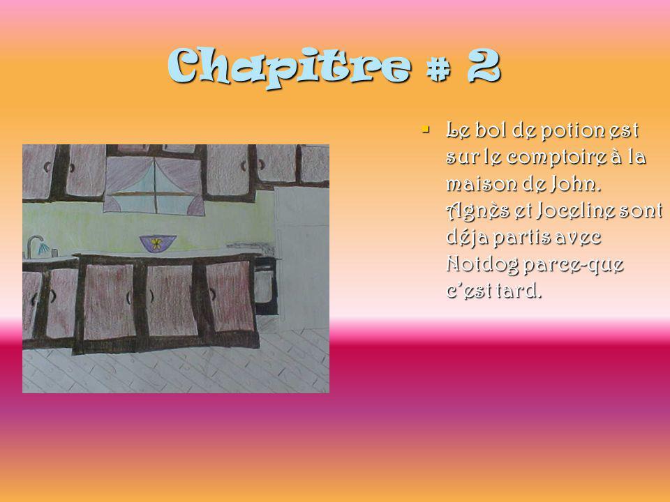 Chapitre # 2  Le bol de potion est sur le comptoire à la maison de John.