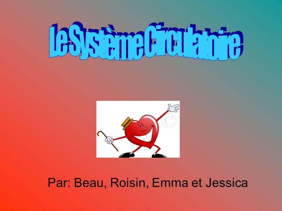 Par: Beau, Roisin, Emma et Jessica
