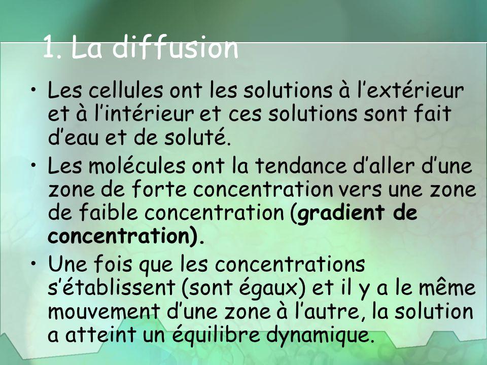 1. La diffusion Les cellules ont les solutions à l'extérieur et à l'intérieur et ces solutions sont fait d'eau et de soluté. Les molécules ont la tend