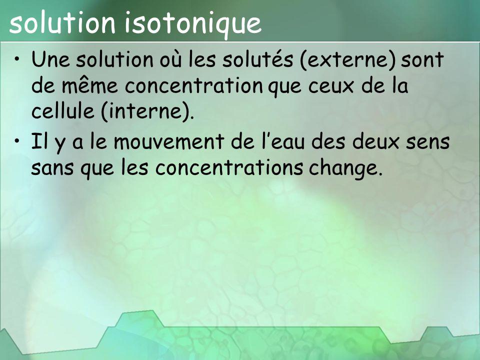 solution isotonique Une solution où les solutés (externe) sont de même concentration que ceux de la cellule (interne). Il y a le mouvement de l'eau de