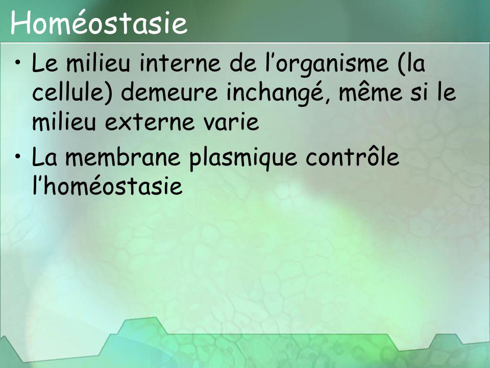 Homéostasie Le milieu interne de l'organisme (la cellule) demeure inchangé, même si le milieu externe varie La membrane plasmique contrôle l'homéostas