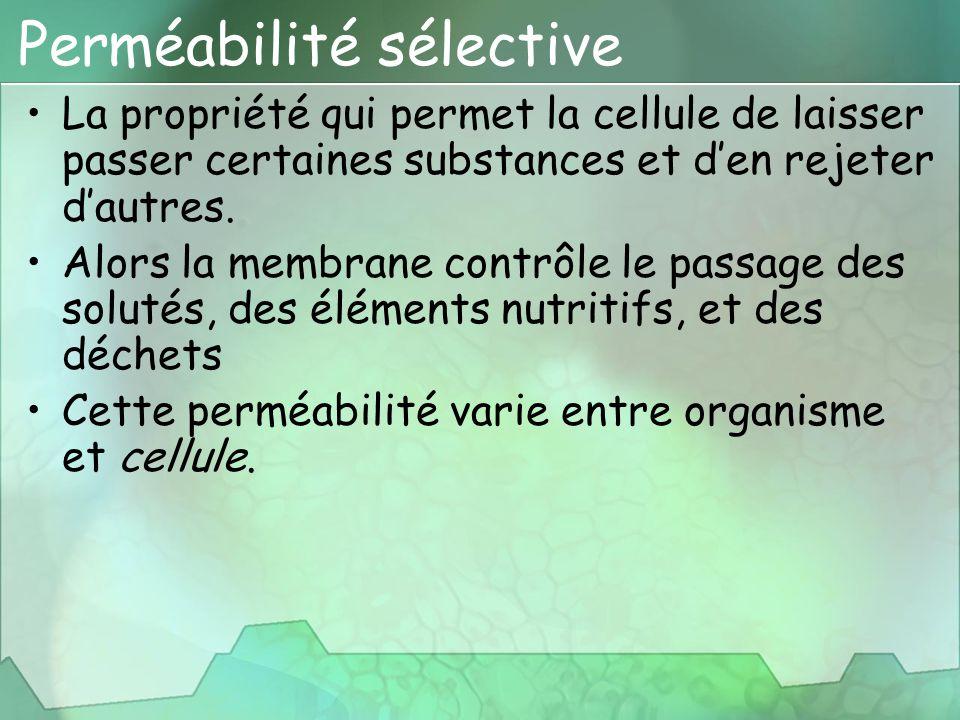 Perméabilité sélective La propriété qui permet la cellule de laisser passer certaines substances et d'en rejeter d'autres. Alors la membrane contrôle