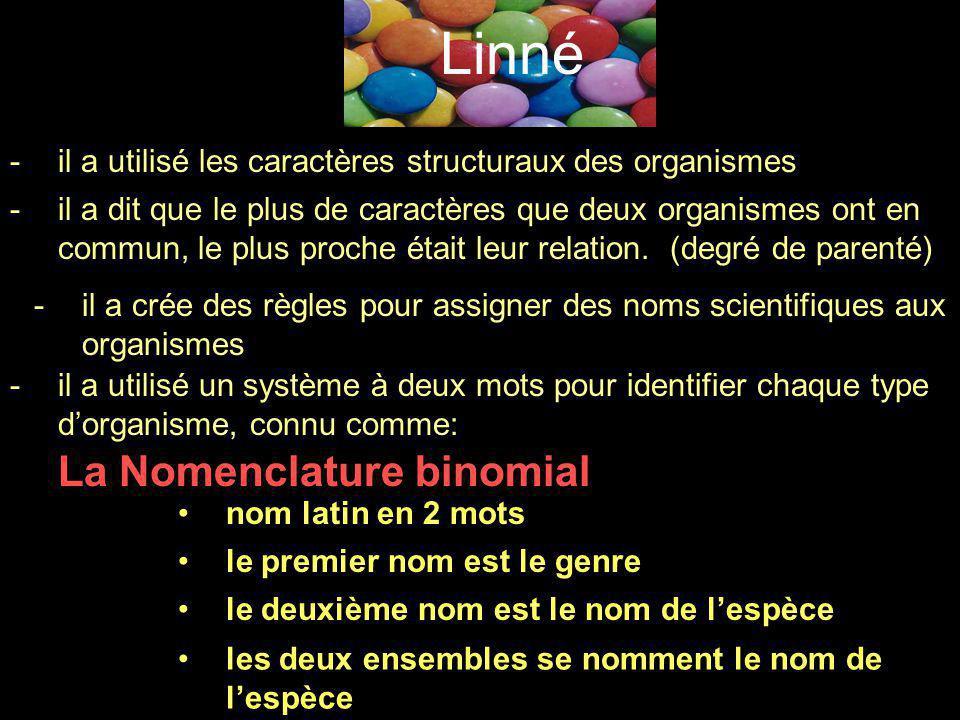 Linné -il a utilisé les caractères structuraux des organismes -il a dit que le plus de caractères que deux organismes ont en commun, le plus proche ét
