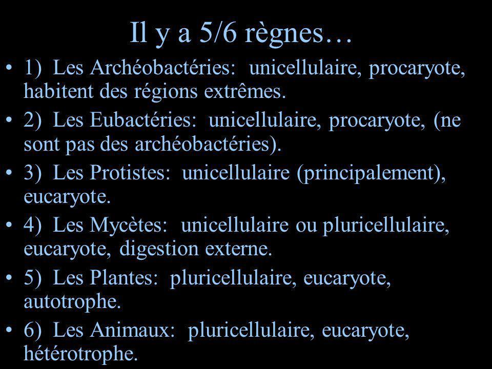 Il y a 5/6 règnes… 1) Les Archéobactéries: unicellulaire, procaryote, habitent des régions extrêmes. 2) Les Eubactéries: unicellulaire, procaryote, (n