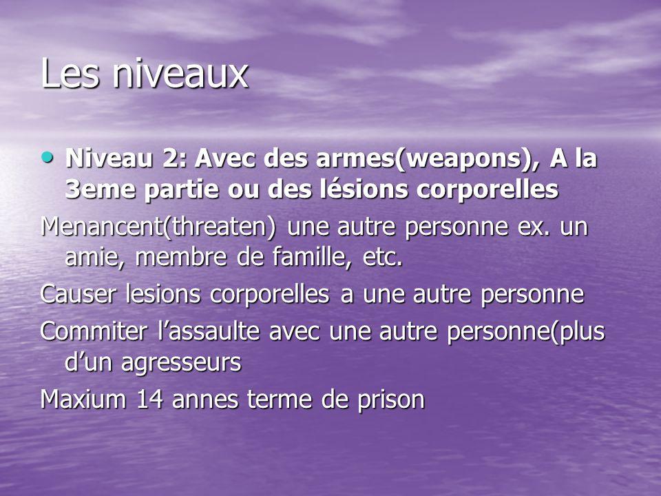Les niveaux Niveau 2: Avec des armes(weapons), A la 3eme partie ou des lésions corporelles Niveau 2: Avec des armes(weapons), A la 3eme partie ou des lésions corporelles Menancent(threaten) une autre personne ex.