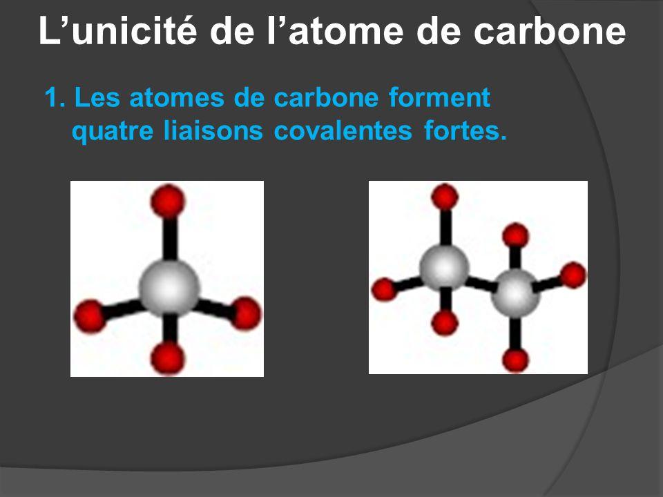L'unicité de l'atome de carbone 2.