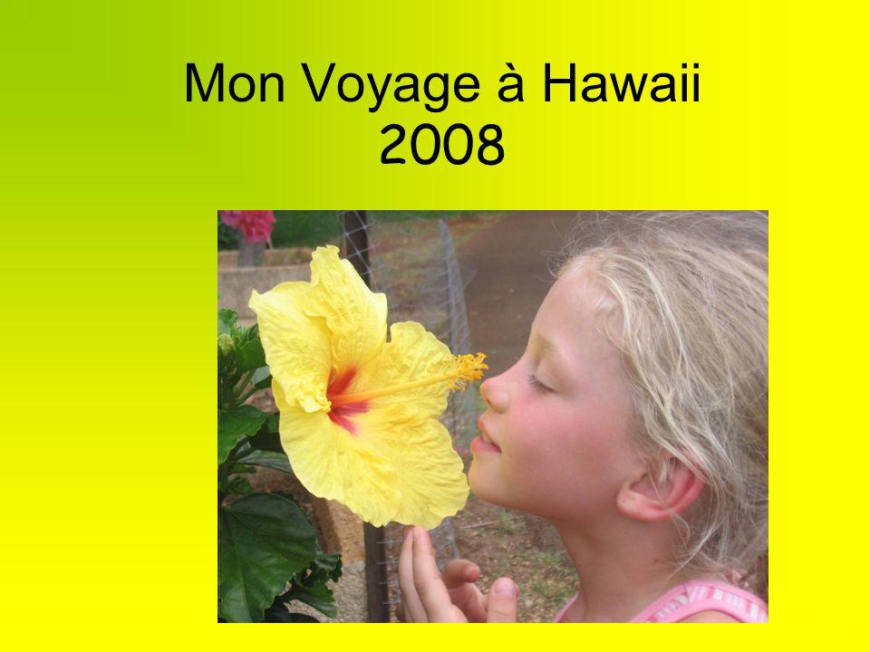 Mon Voyage à Hawaii 2008