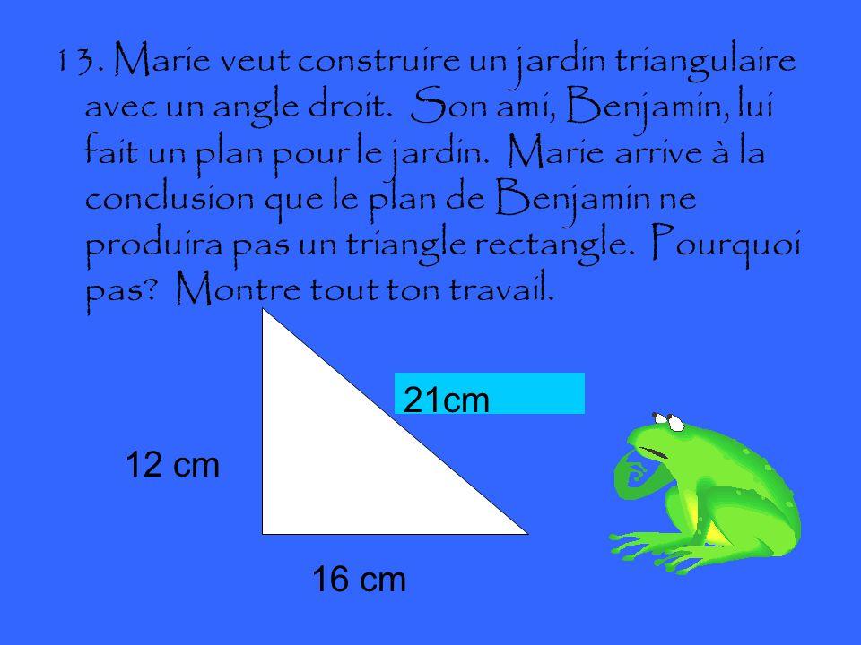 13. Marie veut construire un jardin triangulaire avec un angle droit.