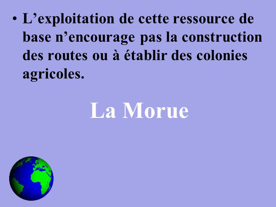 L'exploitation de cette ressource de base n'encourage pas la construction des routes ou à établir des colonies agricoles.