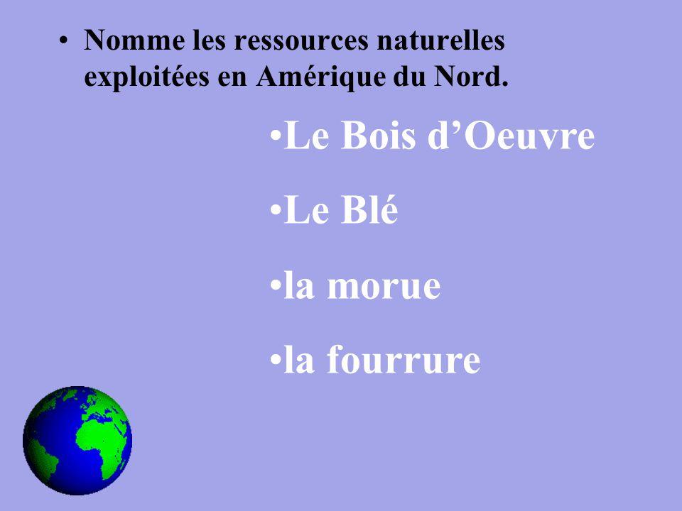 Nomme les ressources naturelles exploitées en Amérique du Nord.