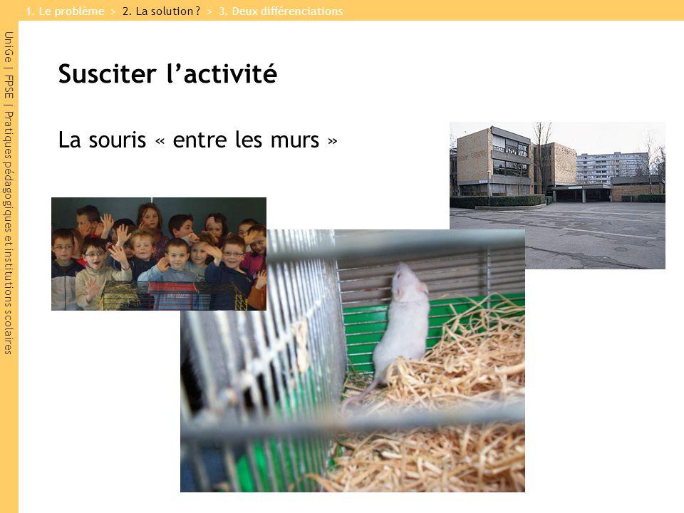UniGe | FPSE | Pratiques pédagogiques et institutions scolaires Susciter l'activité La souris « entre les murs » 1.