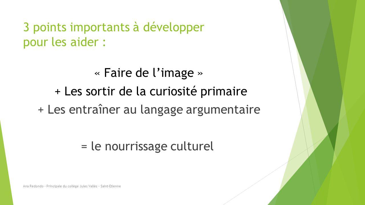3 points importants à développer pour les aider : « Faire de l'image » + Les sortir de la curiosité primaire + Les entraîner au langage argumentaire =