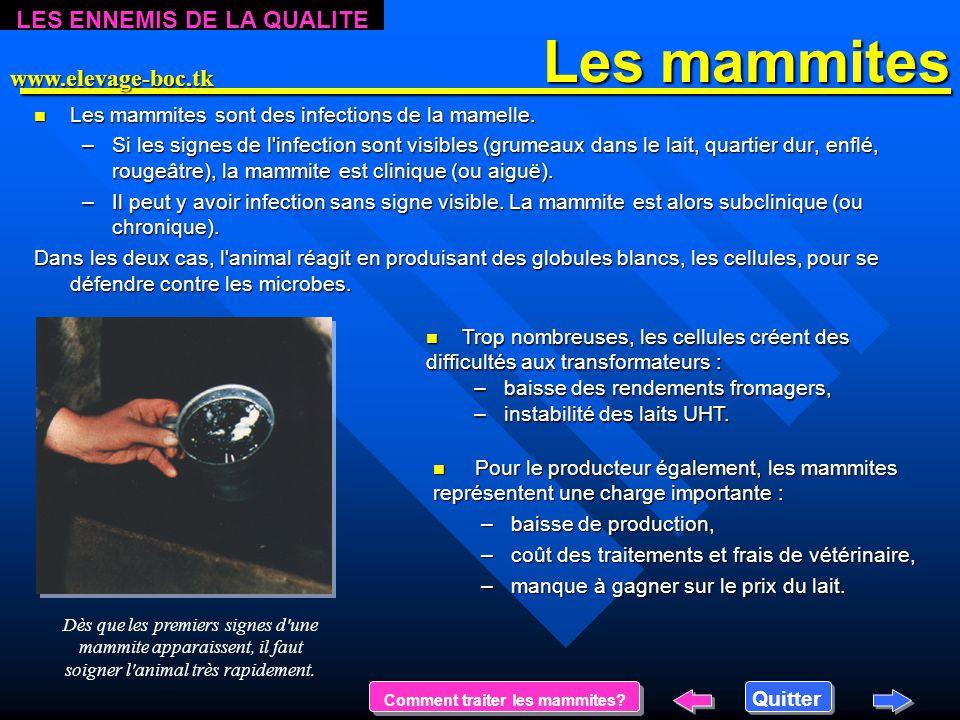 Les mammites Les mammites n Les n Les mammites sont des infections de la mamelle.