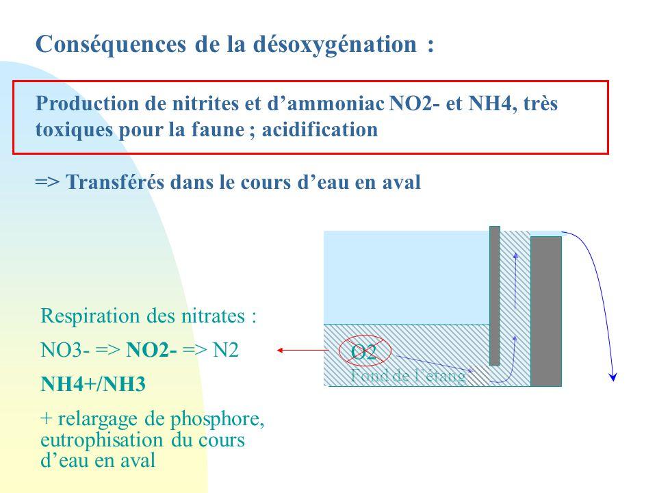 Conséquence de l'accumulation de matière organique : n Stimulation des processus microbiens de décomposition n En profondeur : => les bactéries et mic