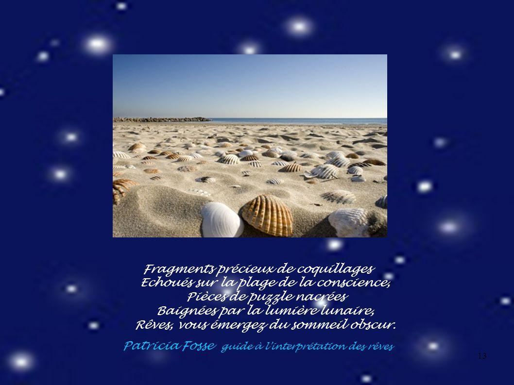 13 Fragments précieux de coquillages Echoués sur la plage de la conscience, Pièces de puzzle nacrées Baignées par la lumière lunaire, Rêves, vous émergez du sommeil obscur.