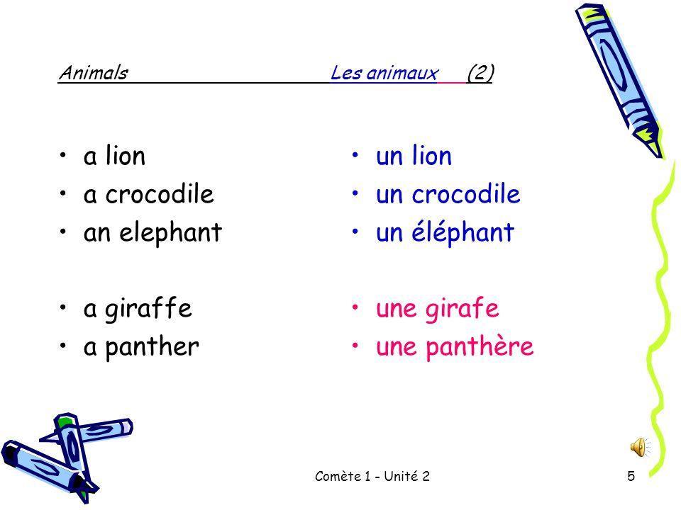 Comète 1 - Unité 25 AnimalsLes animaux (2) a lion a crocodile an elephant a giraffe a panther un lion un crocodile un éléphant une girafe une panthère