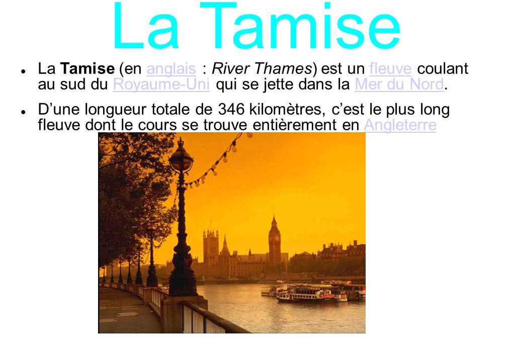 La Tamise La Tamise (en anglais : River Thames) est un fleuve coulant au sud du Royaume-Uni qui se jette dans la Mer du Nord.anglaisfleuveRoyaume-UniM