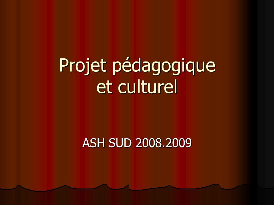 Projet pédagogique et culturel ASH SUD 2008.2009