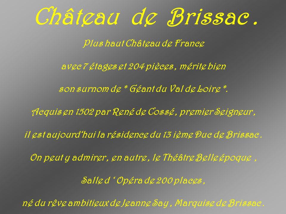 Château de Brissac.