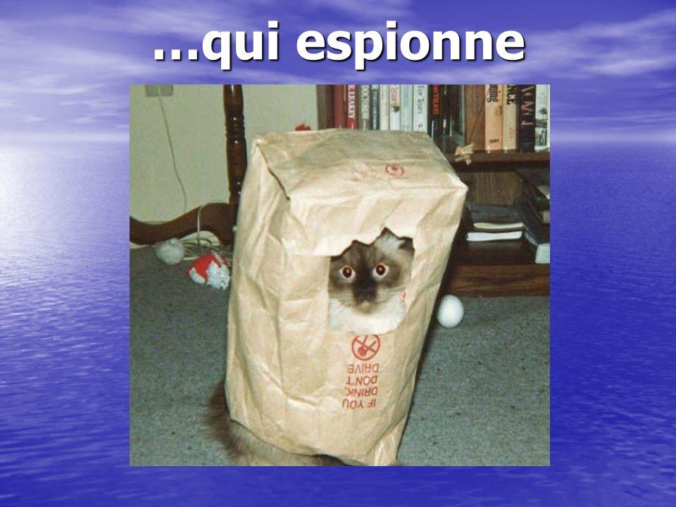 …qui espionne