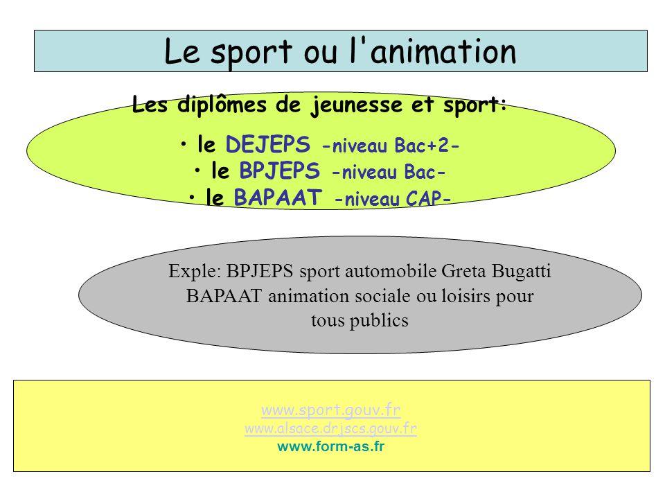 Le sport ou l'animation Les diplômes de jeunesse et sport: le DEJEPS -niveau Bac+2- le BPJEPS -niveau Bac- le BAPAAT -niveau CAP- www.sport.gouv.fr ww