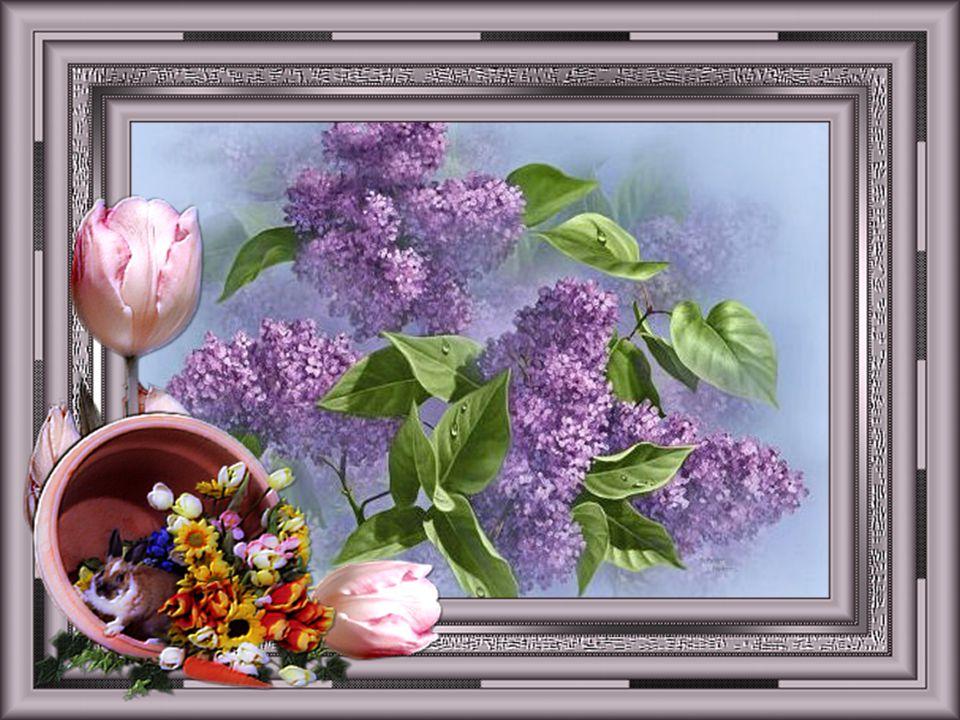 Les fleurs ont un langage Qui parle aux gens sages, Pour leur dire en silence Tout l'amour que l'on pense...