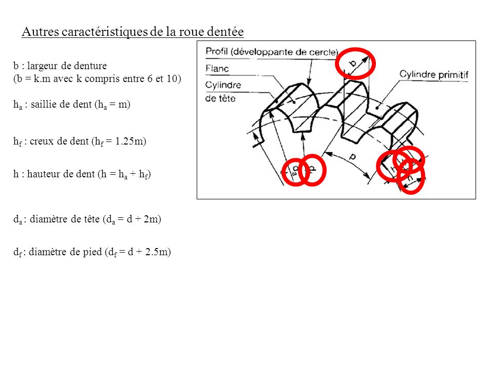 Autres caractéristiques de la roue dentée b : largeur de denture (b = k.m avec k compris entre 6 et 10) h a : saillie de dent (h a = m) h f : creux de dent (h f = 1.25m) h : hauteur de dent (h = h a + h f ) d a : diamètre de tête (d a = d + 2m) d f : diamètre de pied (d f = d + 2.5m)