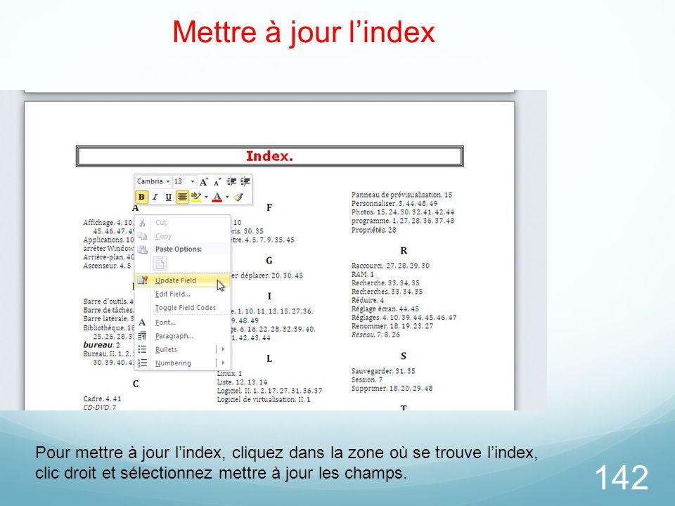 142 Mettre à jour l'index Pour mettre à jour l'index, cliquez dans la zone où se trouve l'index, clic droit et sélectionnez mettre à jour les champs.