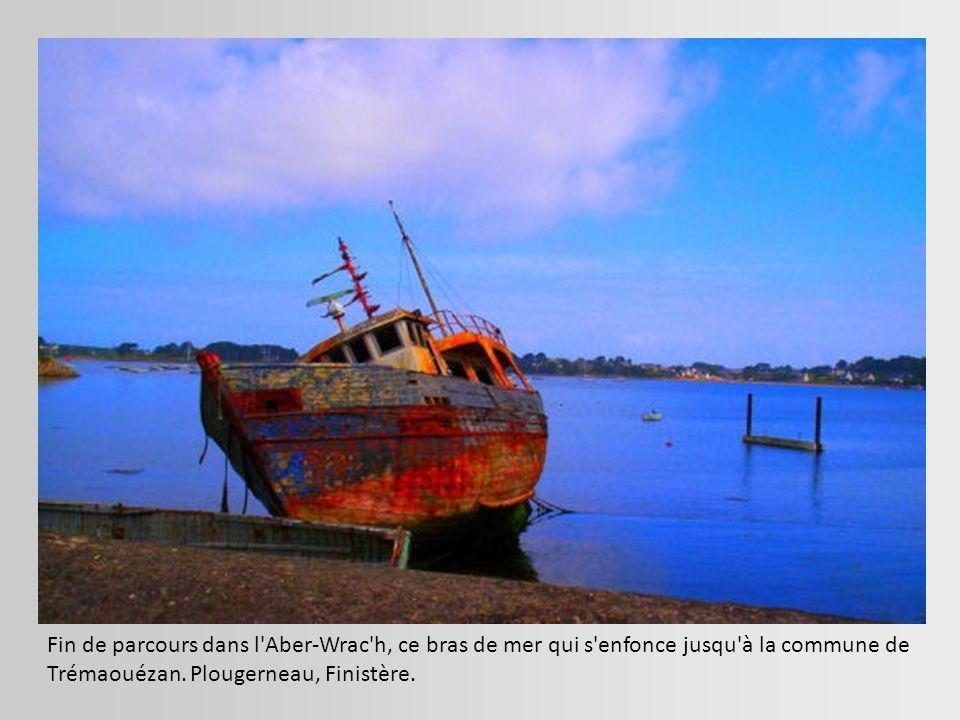 Épave d un remorqueur visible entre Equihen et Hardelot, sur la plage. Pas-de-Calais