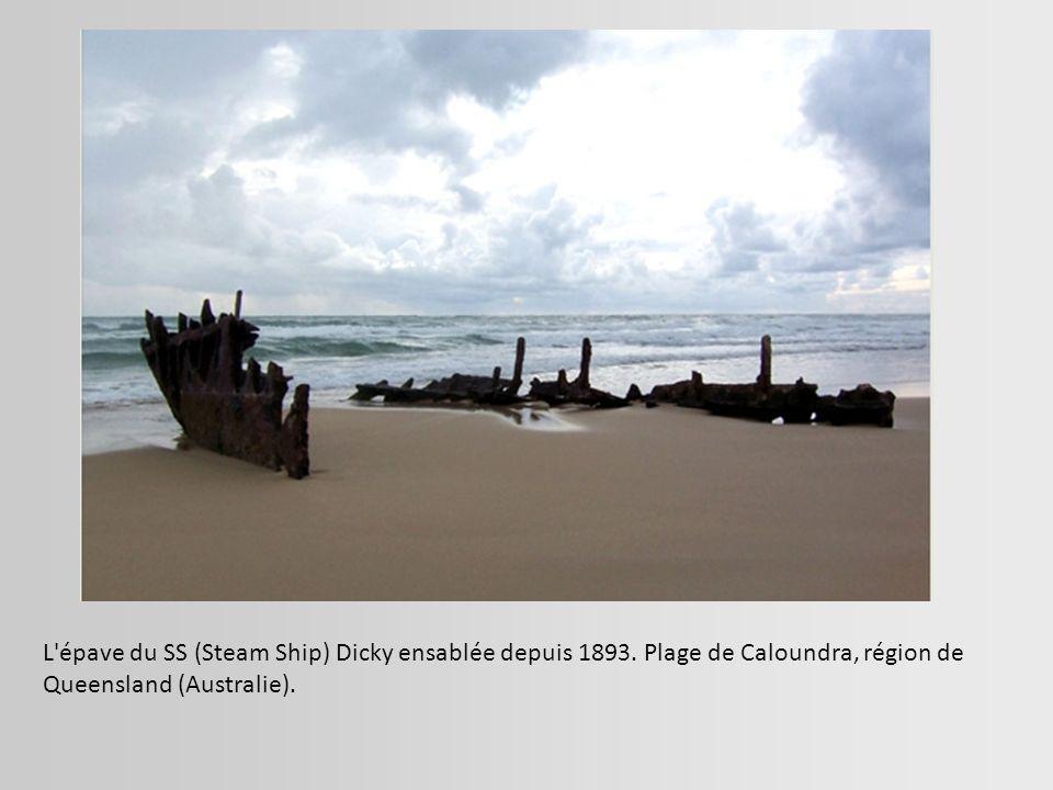 Le cargo néerlandais Artemis, échoué le 12 novembre 1999 sur une plage des Sables d Olonne.