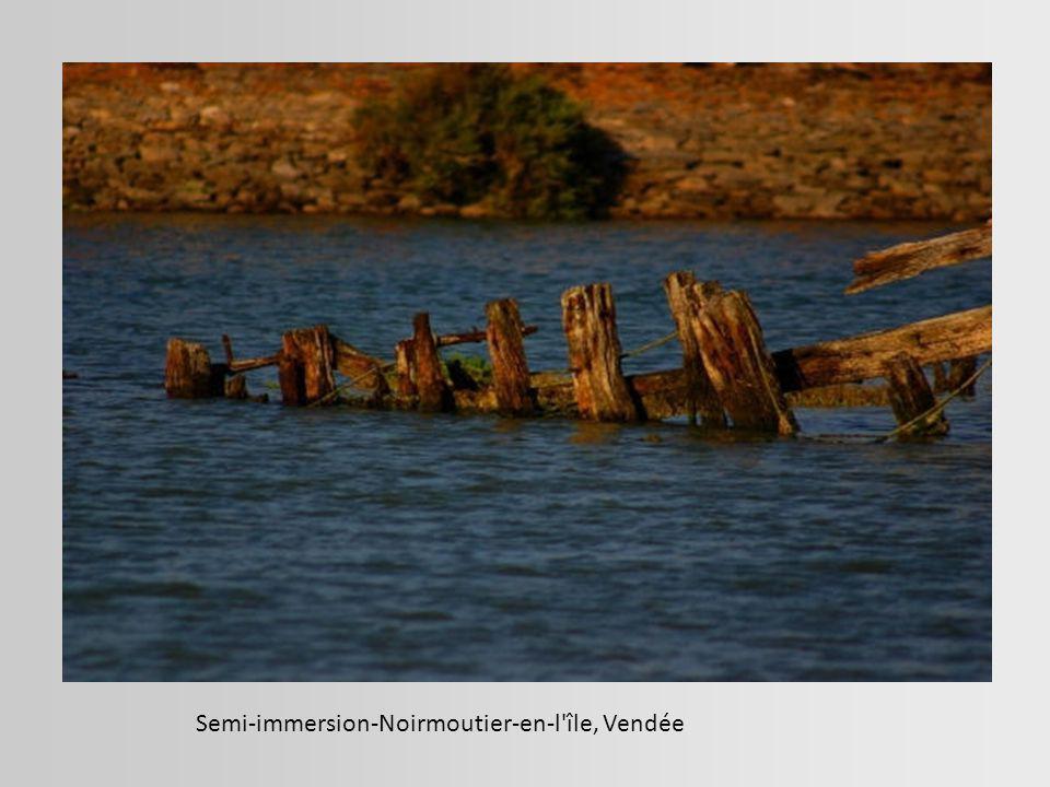 Photo prise dans le cimetière à bateaux de Magouër. Etel, Morbihan.