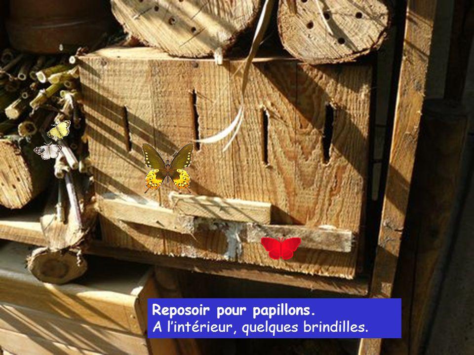 Bûches percés, mais aussi paille, brique, bambous, tous les styles et tous les diamètres pour contenter toute la famille des auxiliaires.