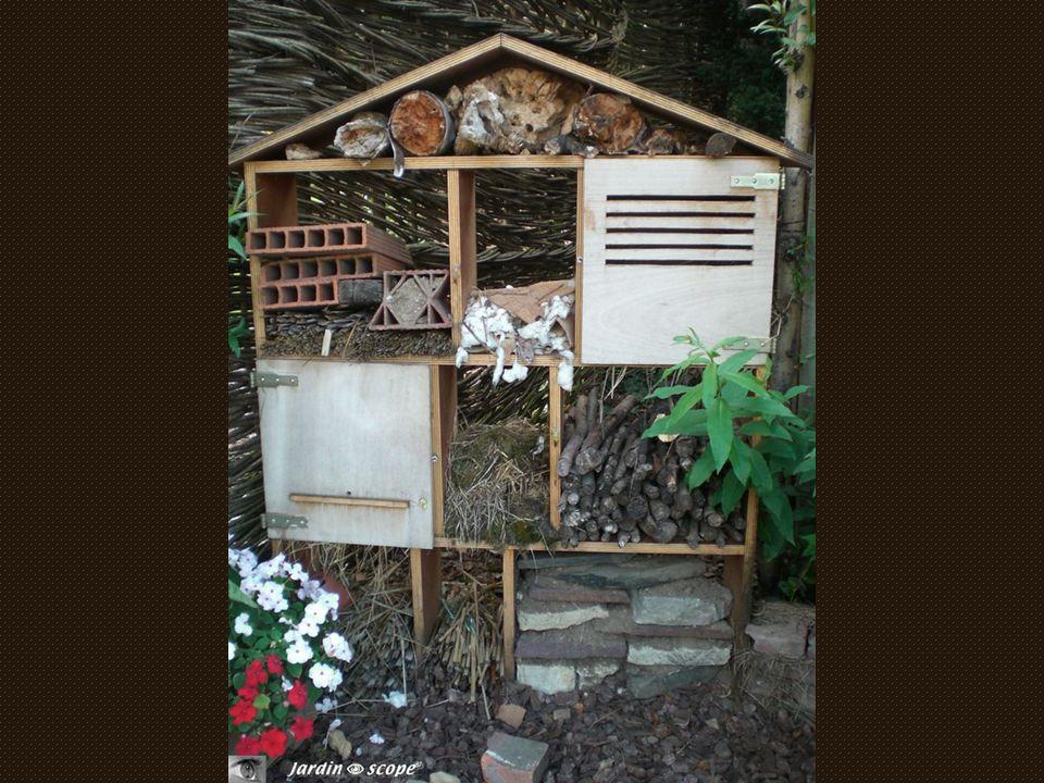 Votre hôtel va pouvoir ouvrir ses portes avant l'hiver, juste à temps pour accueillir pontes et larves de certains insectes. Il contribuera à enrichir