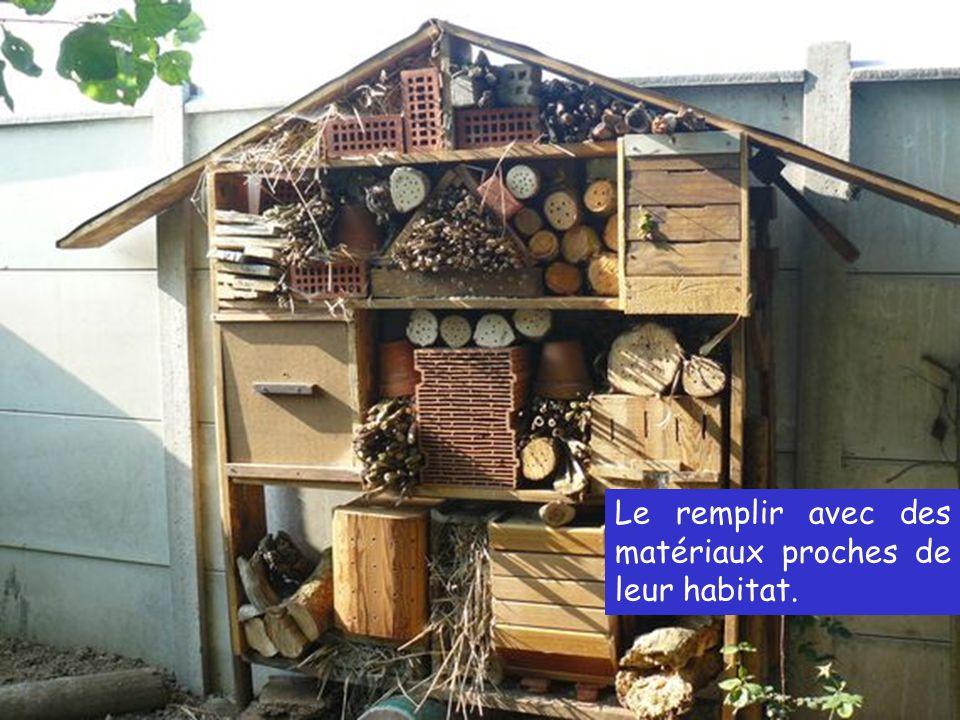 Le remplir avec des matériaux proches de leur habitat.