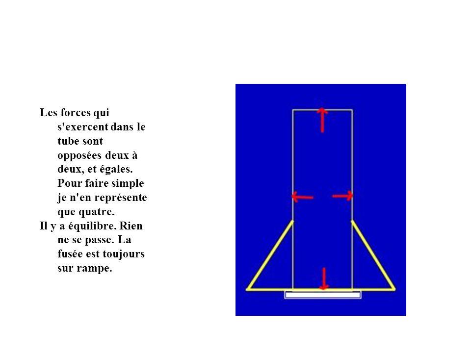 Les forces qui s exercent dans le tube sont opposées deux à deux, et égales.