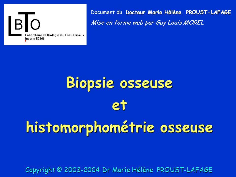Formules : T Ar: Tissue Area: aire tissulaire totale, mm2 B Ar: Bone Area, Aire de tissu osseux, mm2 B Pm: périmètres trabéculaires totaux, mm BV/TV= B Ar/ T Area= /, % BS/ BV= B Pm/ B Ar x 1.199 Tb Th= 2000/ (BS/BV) (Trab thickness, µm) Tb N= (BV/TV x 10)/ Tb Th (Trab number, / mm) Tb Sp= Tb Th x [ ( 100/BV/TV) -1] (Trab separation) Tb Th= MTPT, Tb N= MTPD, Tb Sp= MTPS Copyright © 2003-2004DrMarie Hélène PROUST-LAFAGE Copyright © 2003-2004 Dr Marie Hélène PROUST-LAFAGE