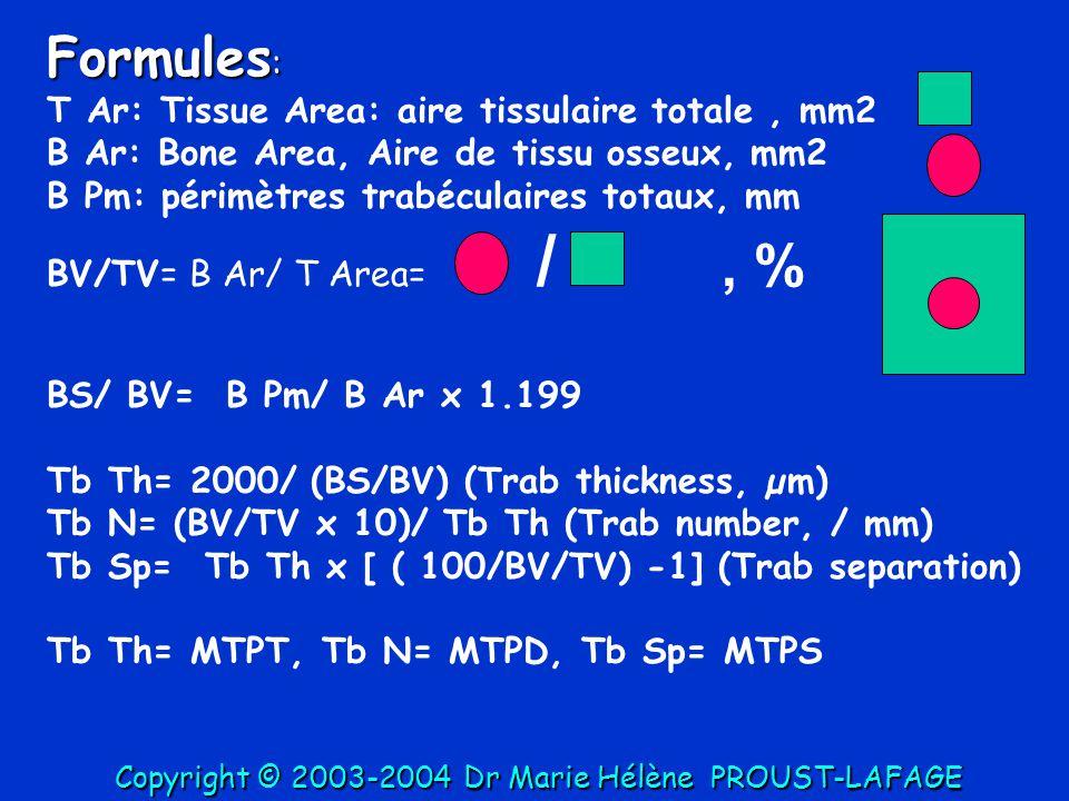Formules : T Ar: Tissue Area: aire tissulaire totale, mm2 B Ar: Bone Area, Aire de tissu osseux, mm2 B Pm: périmètres trabéculaires totaux, mm BV/TV=